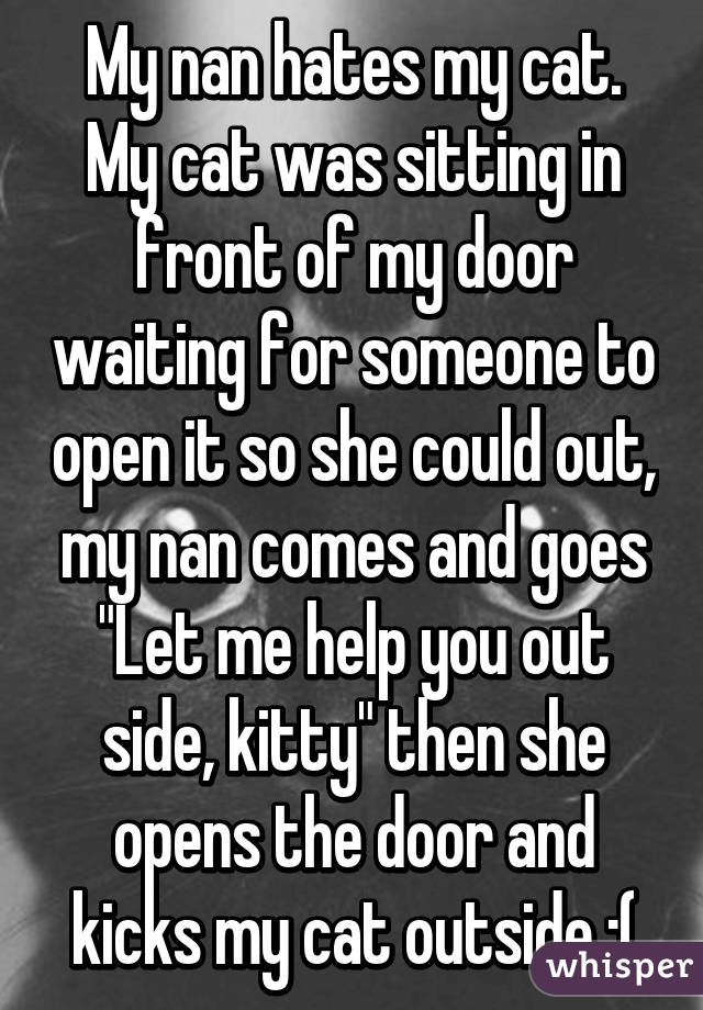 "My nan hates my cat. My cat was sitting in front of my door waiting for someone to open it so she could out, my nan comes and goes ""Let me help you out side, kitty"" then she opens the door and kicks my cat outside :("