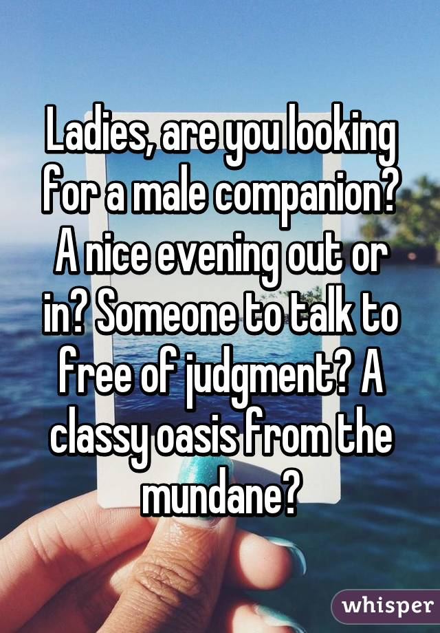 Ladies, are you looking for a male companion? A nice evening out or in? Someone to talk to free of judgment? A classy oasis from the mundane?