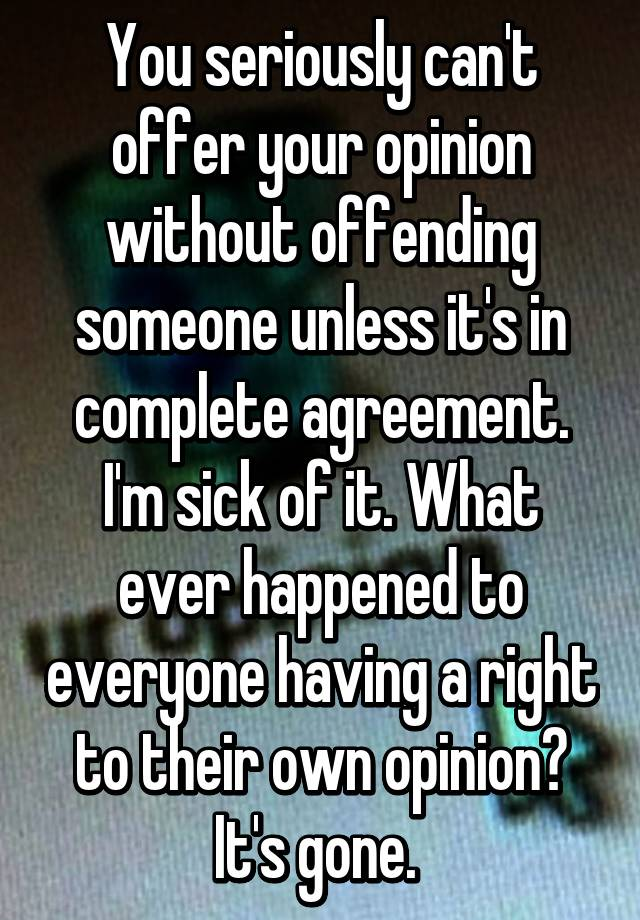 You Seriously Cant Offer Your Opinion Without Offending Someone