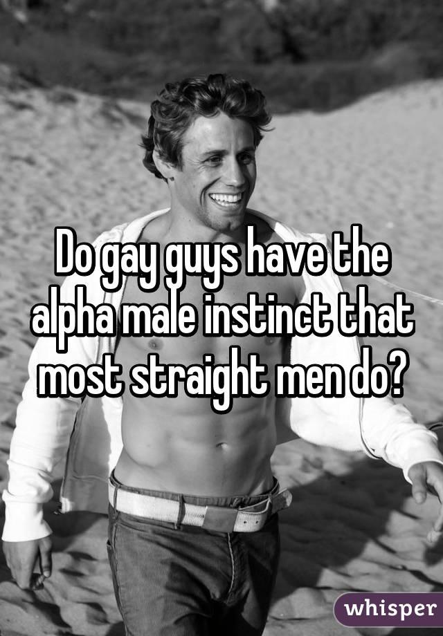 Alpha males gay