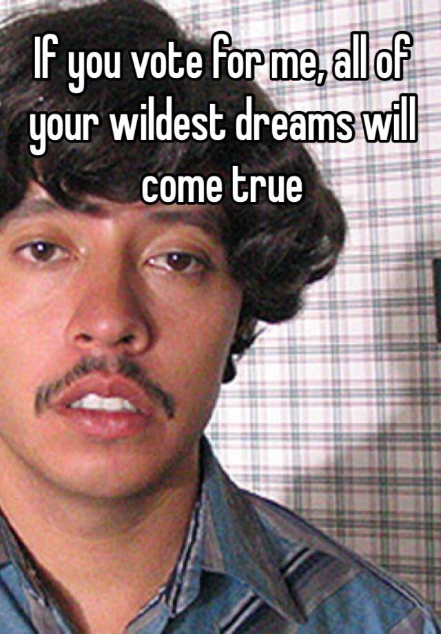 Vote For Pedro And All Your Wildest Dreams If you vote for me, al...