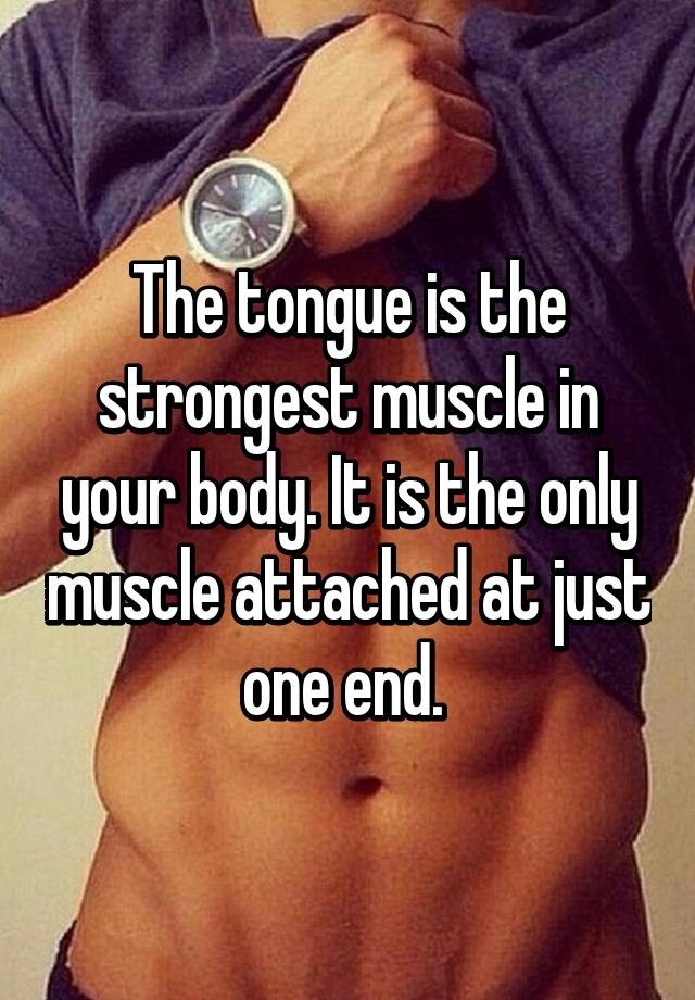 The Tongue Is The Strongest Muscle In Your Body It Is The Only