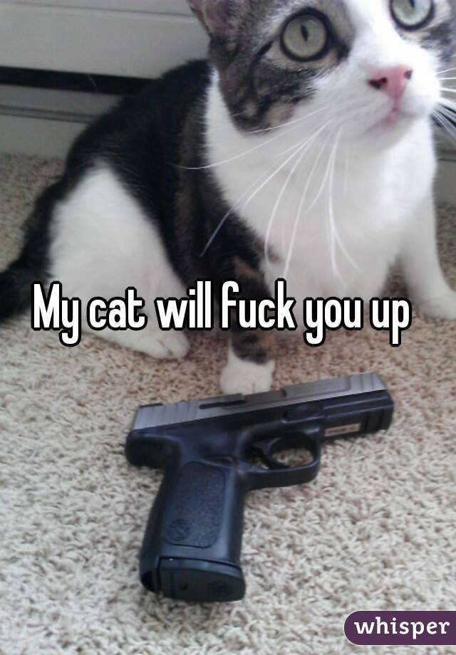 Can you fuck a cat