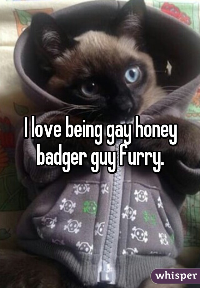 Honey badger gay guy