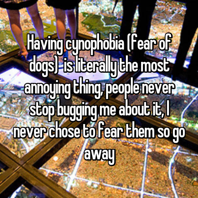 Having cynophobia (fear of dogs)  is literally the most annoying thing, people never stop bugging me about it, I never chose to fear them so go away