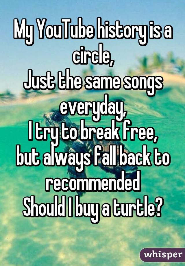 My YouTube history is a circle, Just the same songs everyday, I try to break free, but always fall back to recommended Should I buy a turtle?