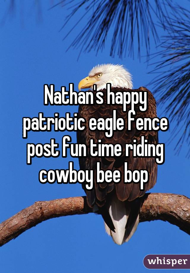Nathan's happy patriotic eagle fence post fun time riding cowboy bee bop