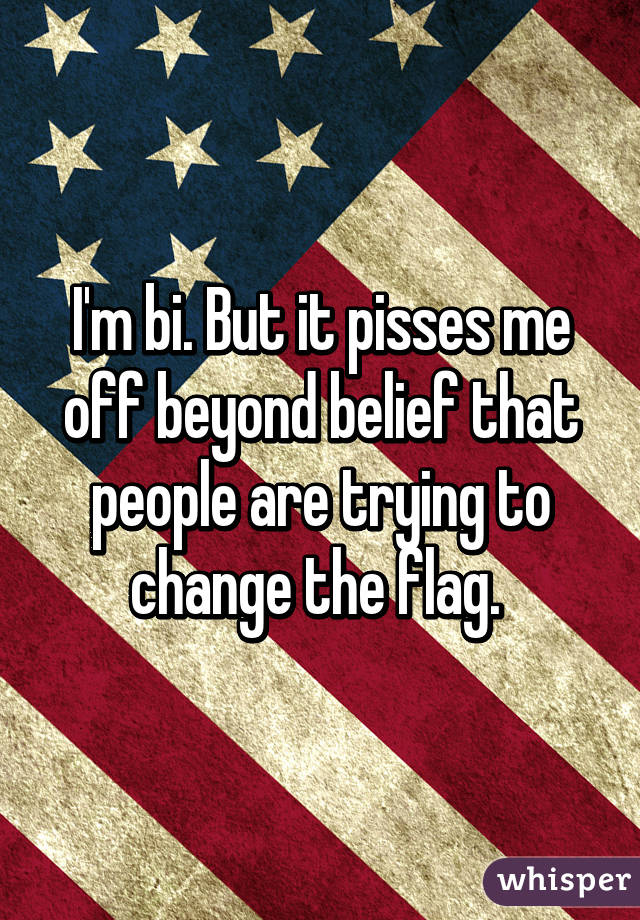 I'm bi. But it pisses me off beyond belief that people are trying to change the flag.