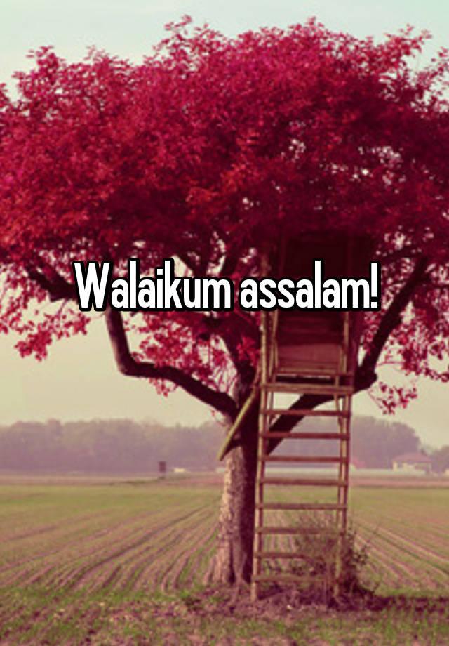 walaikum assalam hd