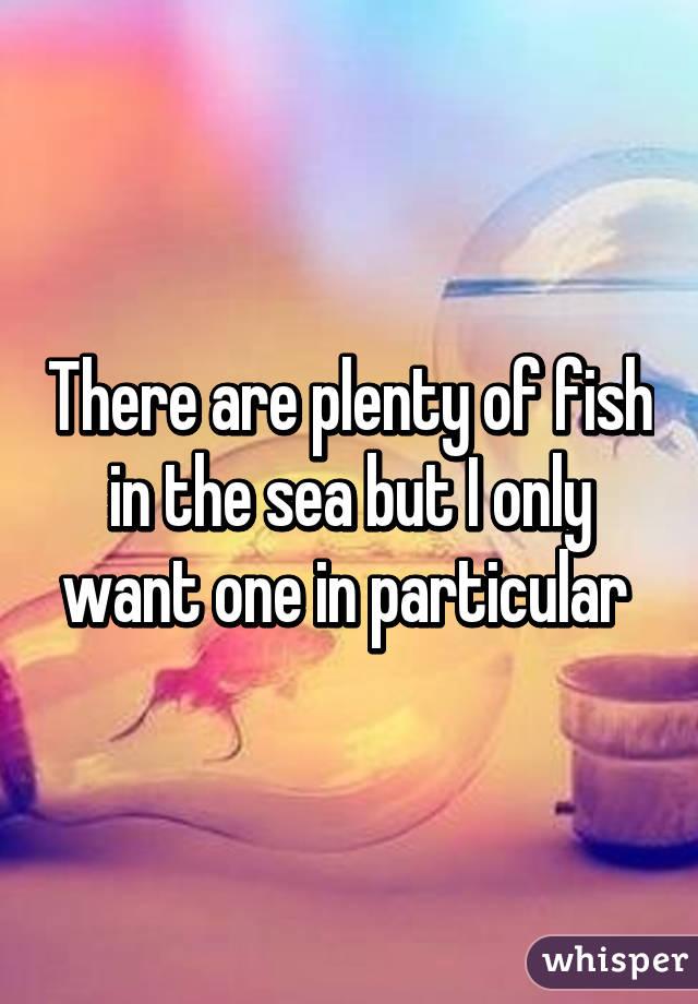 Plenty of fish in the sea app