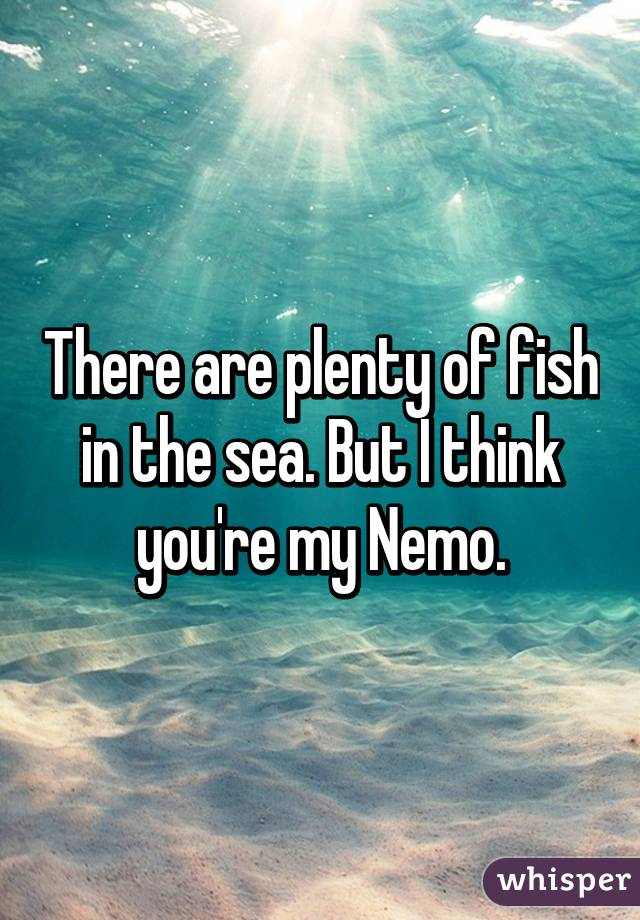 There are plenty of fish in the sea but i think you 39 re my for There are plenty of fish in the sea