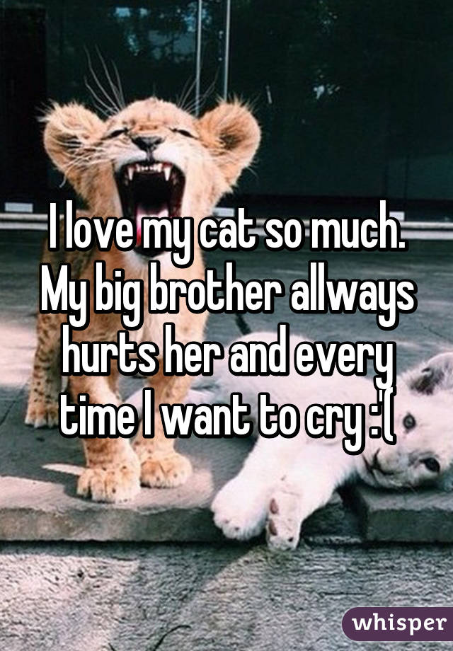 i love my cat so much my big brother allways hurts her and every time i