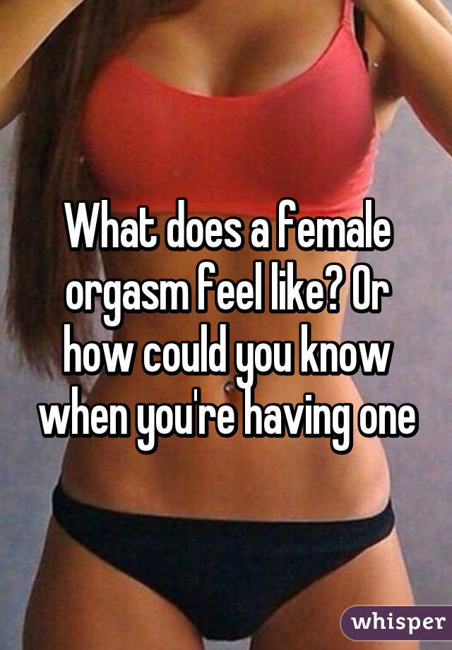 what does a female orgasm feel like