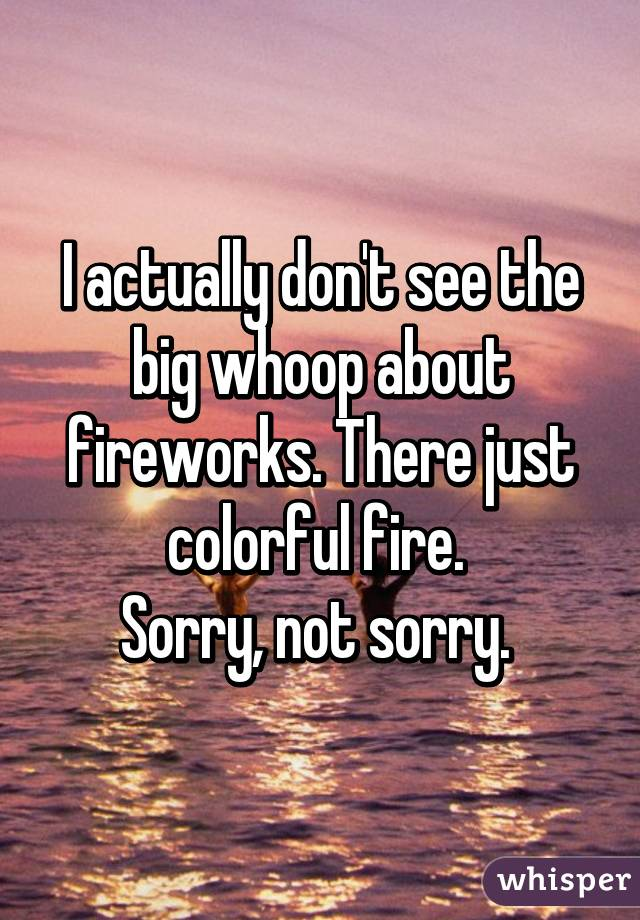 I actually don't see the big whoop about fireworks. There just colorful fire.  Sorry, not sorry.
