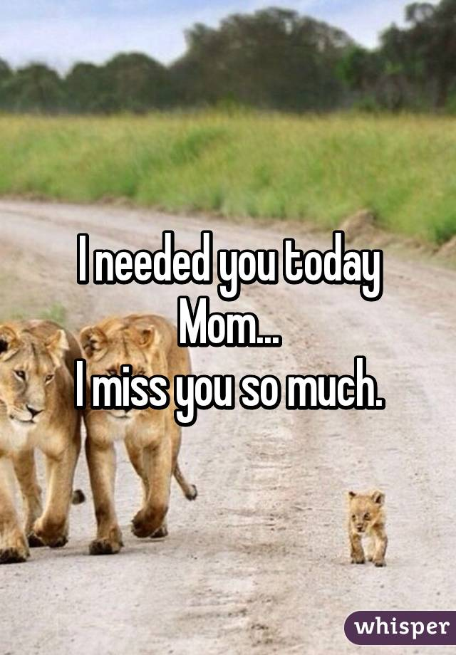 I needed you today Mom... I miss you so much.