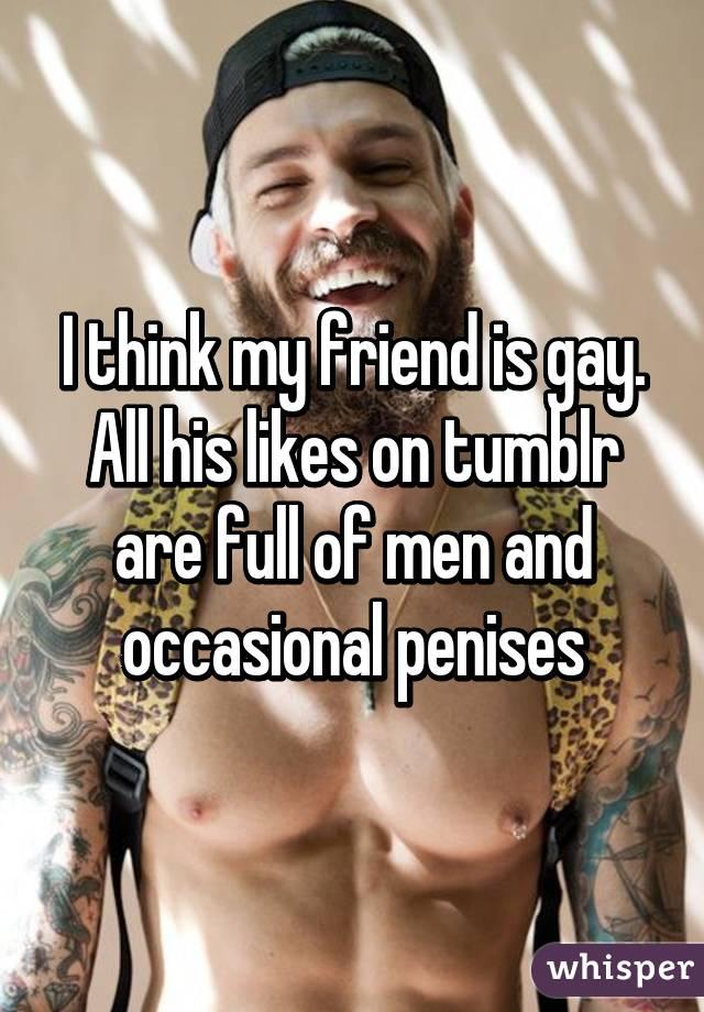 Tranny perverts rapidshare
