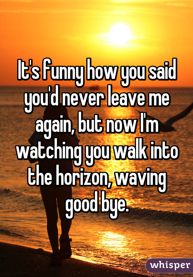 It's funny how you said you'd never leave me again, but now I'm watching you walk into the horizon, waving good bye.