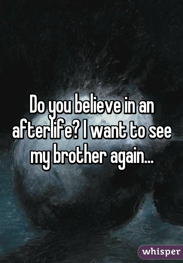 Do you believe in an afterlife? I want to see my brother again...