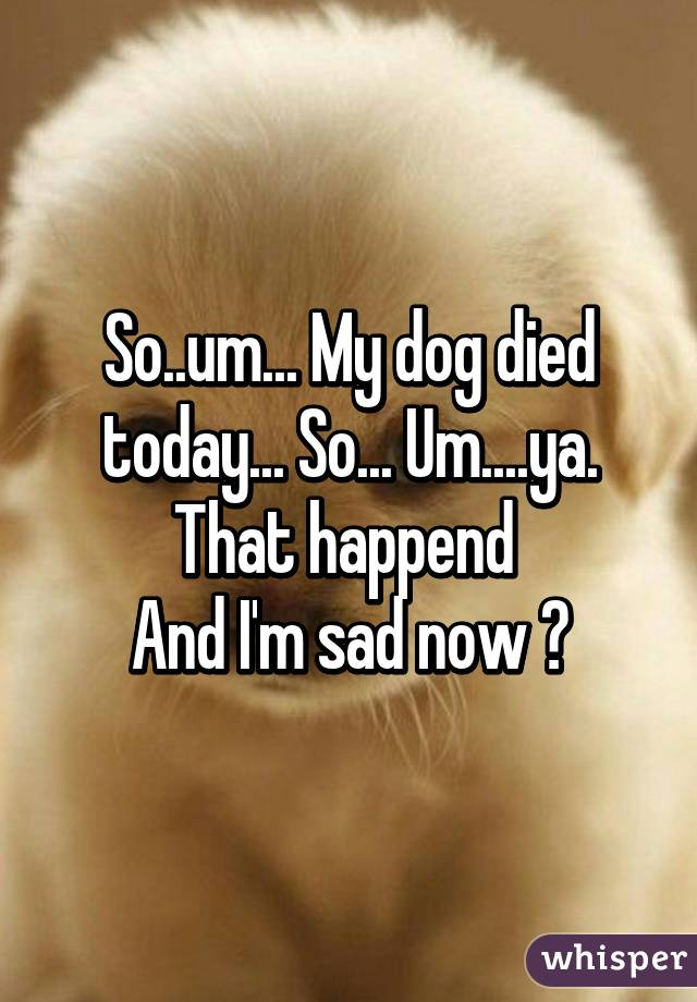 so um my dog died today so um ya that happend and i m