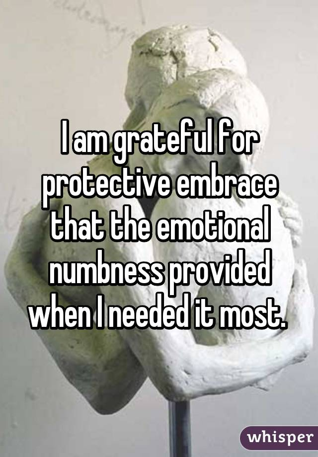 I am grateful for protective embrace that the emotional numbness provided when I needed it most.