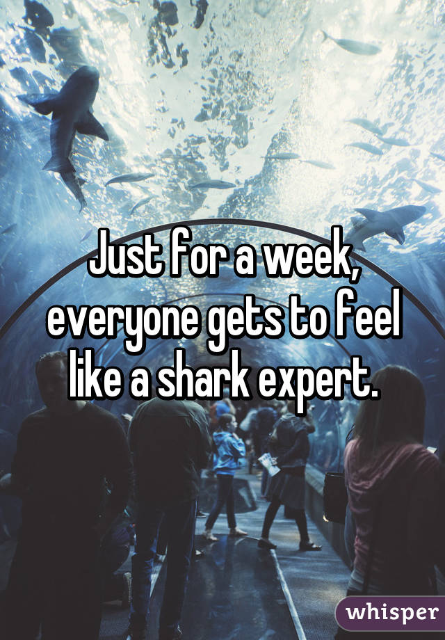 Just for a week, everyone gets to feel like a shark expert.