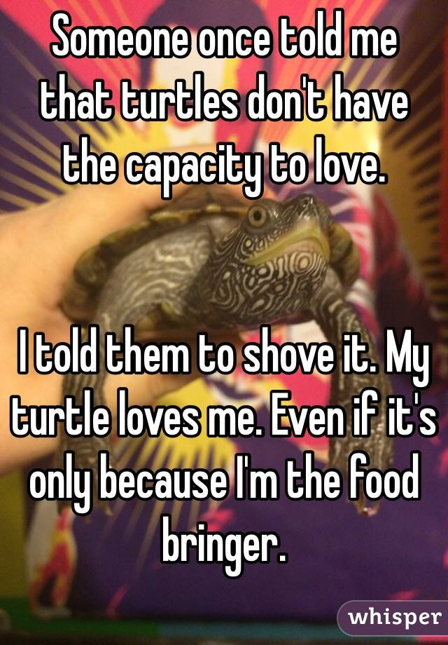 Someone once told me that turtles don't have the capacity to love.    I told them to shove it. My turtle loves me. Even if it's only because I'm the food bringer.