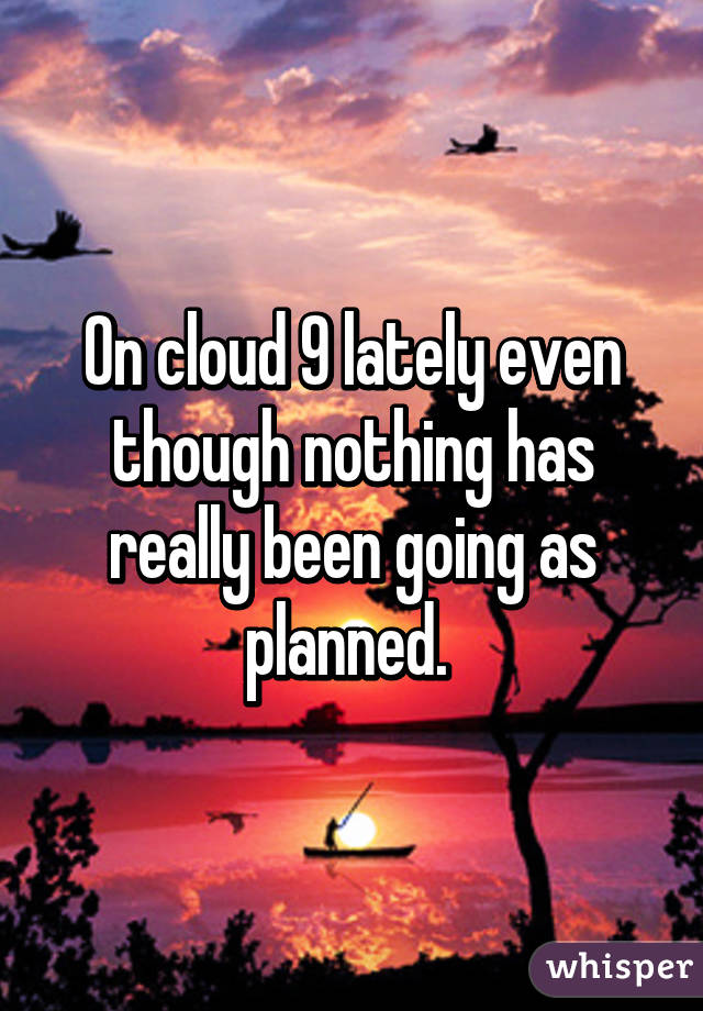 On cloud 9 lately even though nothing has really been going as planned.