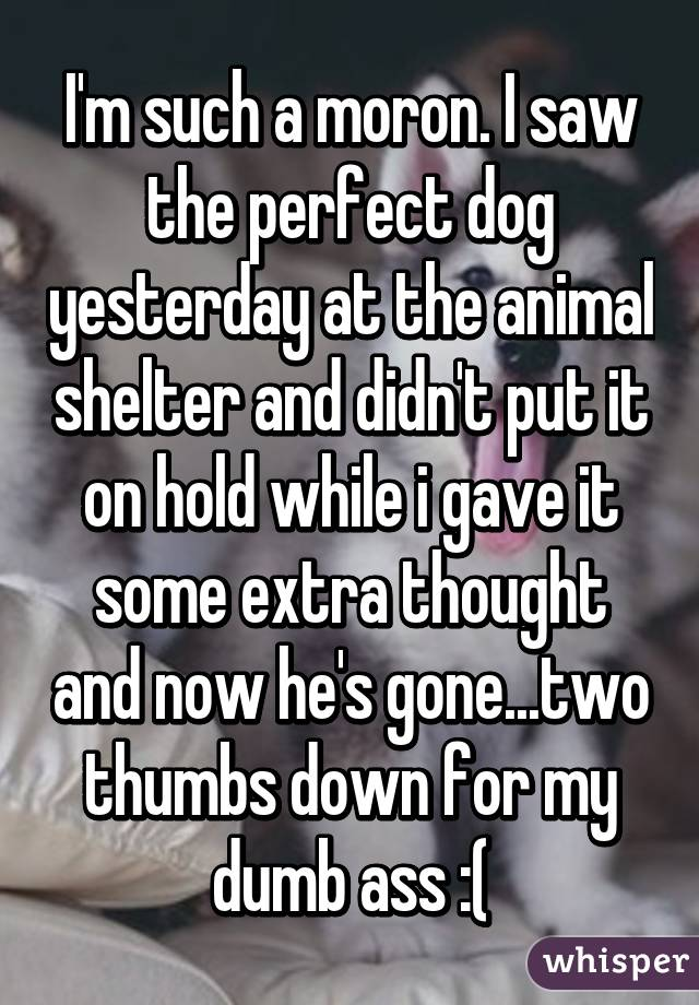 I'm such a moron. I saw the perfect dog yesterday at the animal shelter and didn't put it on hold while i gave it some extra thought and now he's gone...two thumbs down for my dumb ass :(