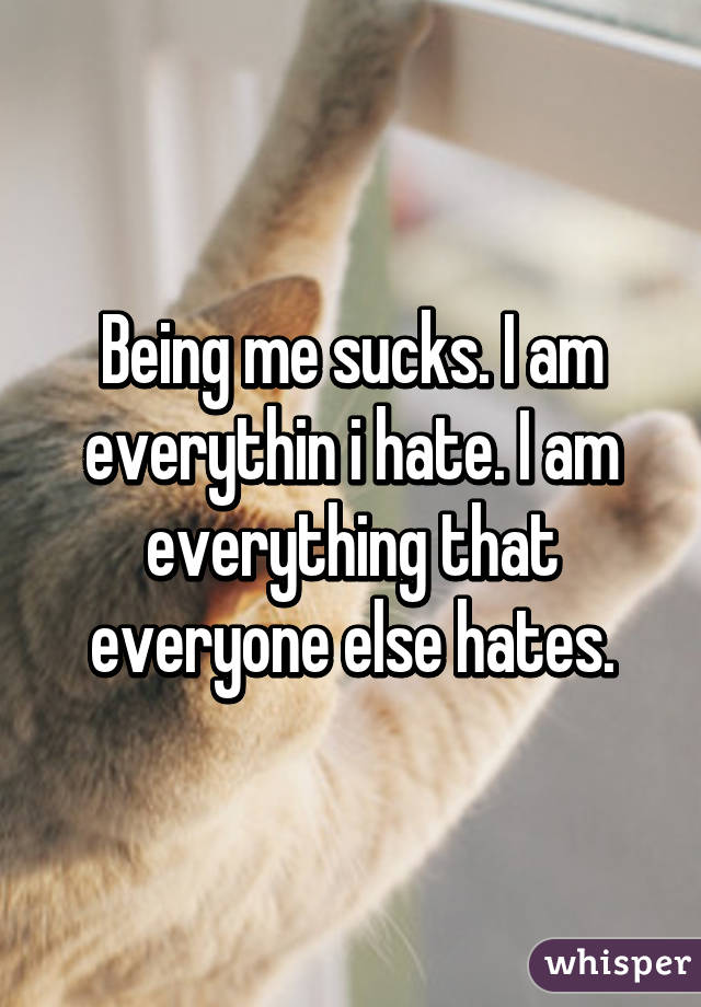 Being me sucks. I am everythin i hate. I am everything that everyone else hates.