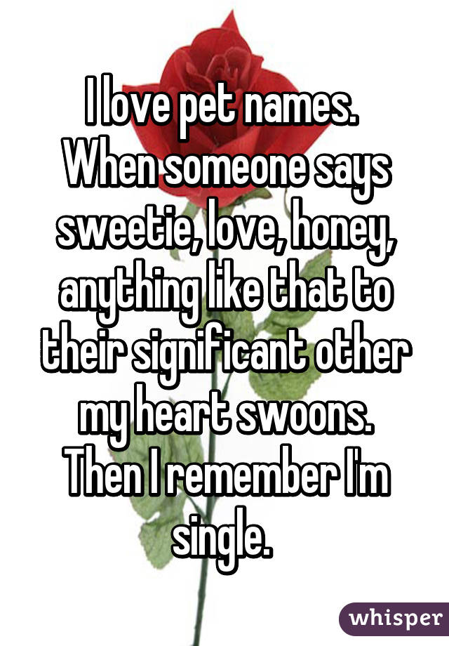 I love pet names.  When someone says sweetie, love, honey, anything like that to their significant other my heart swoons. Then I remember I'm single.