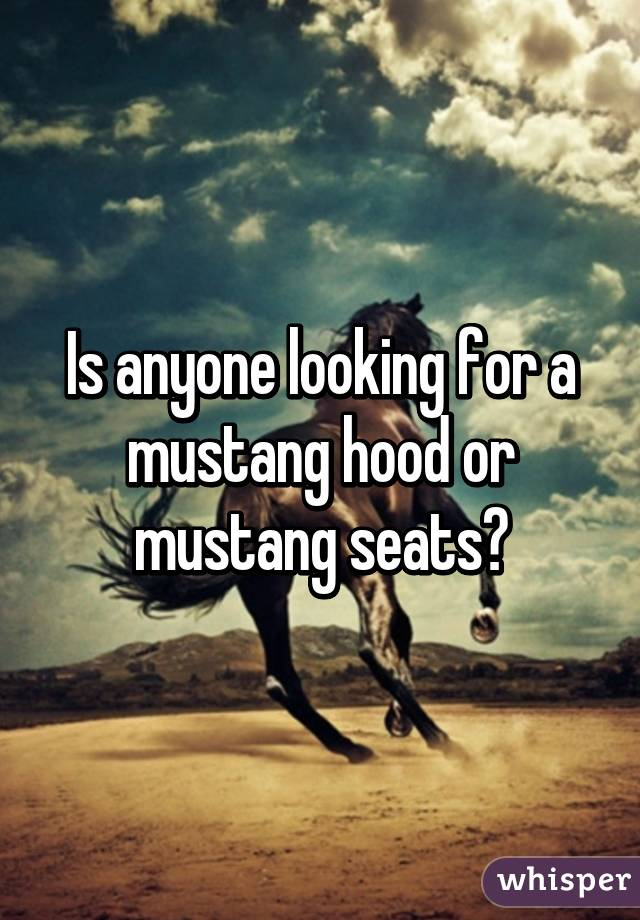 Is anyone looking for a mustang hood or mustang seats?