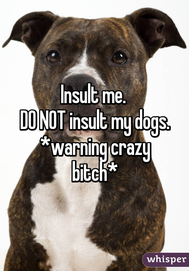 Insult me.  DO NOT insult my dogs. *warning crazy bitch*