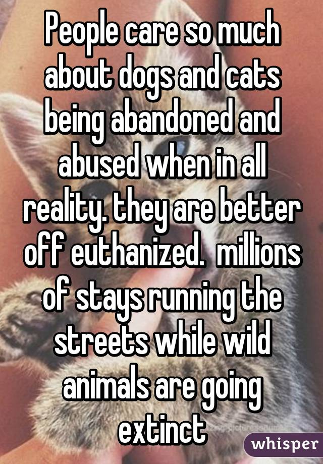 People care so much about dogs and cats being abandoned and abused when in all reality. they are better off euthanized.  millions of stays running the streets while wild animals are going extinct