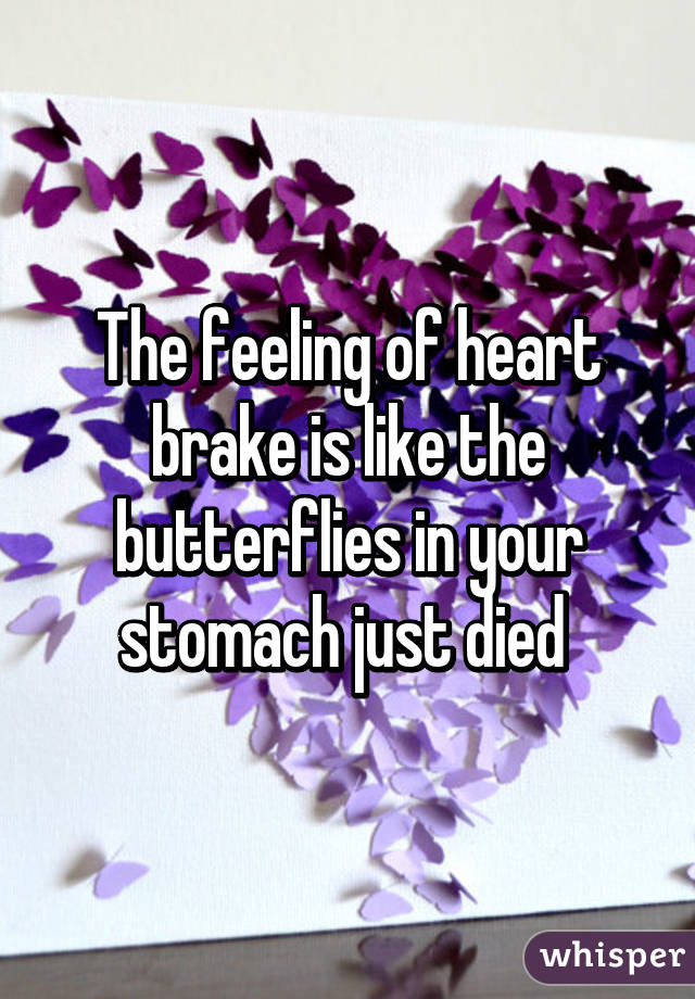 What is the butterfly feeling in your stomach