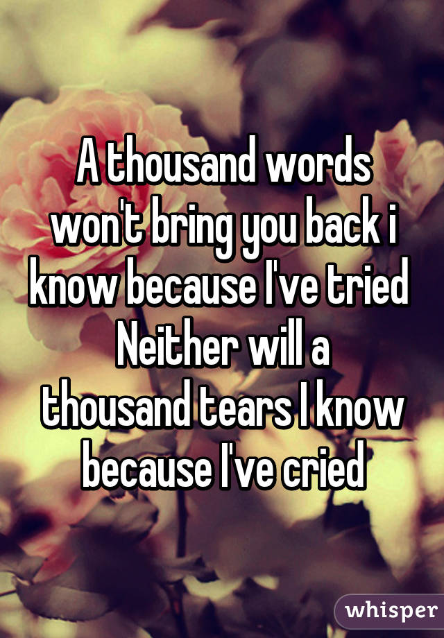 A thousand words won't bring you back i know because I've tried  Neither will a thousand tears I know because I've cried