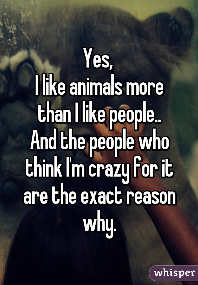 Yes,  I like animals more than I like people.. And the people who think I'm crazy for it are the exact reason why.
