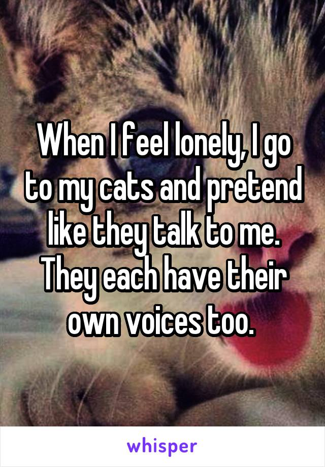 When I feel lonely, I go to my cats and pretend like they talk to me. They each have their own voices too.