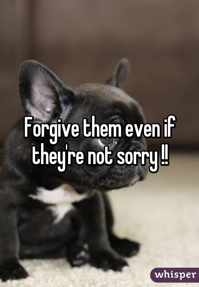 Forgive them even if they're not sorry !!