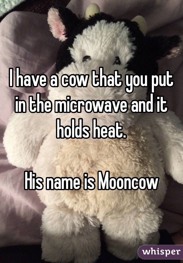 I have a cow that you put in the microwave and it holds heat.  His name is Mooncow