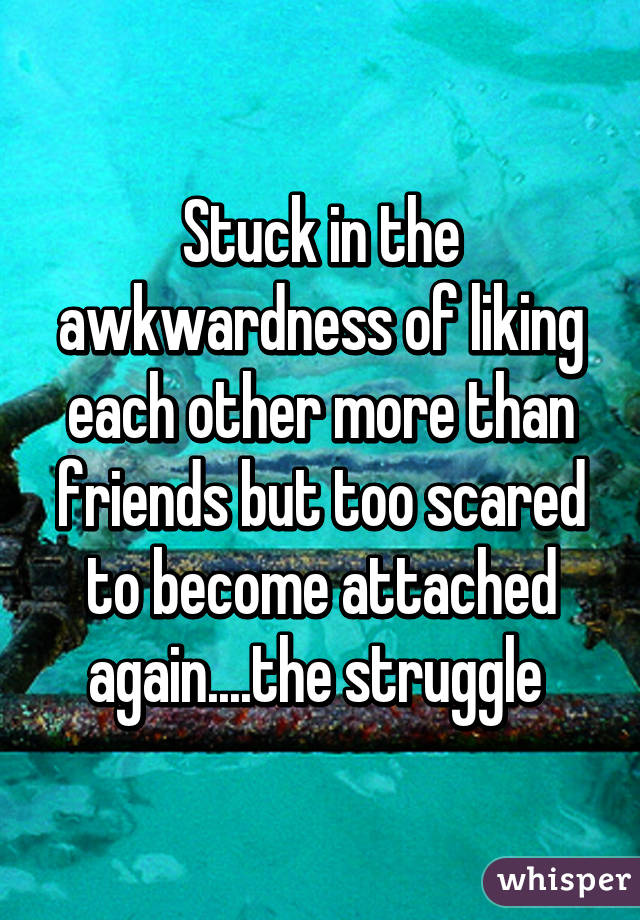 Stuck in the awkwardness of liking each other more than friends but too scared to become attached again....the struggle