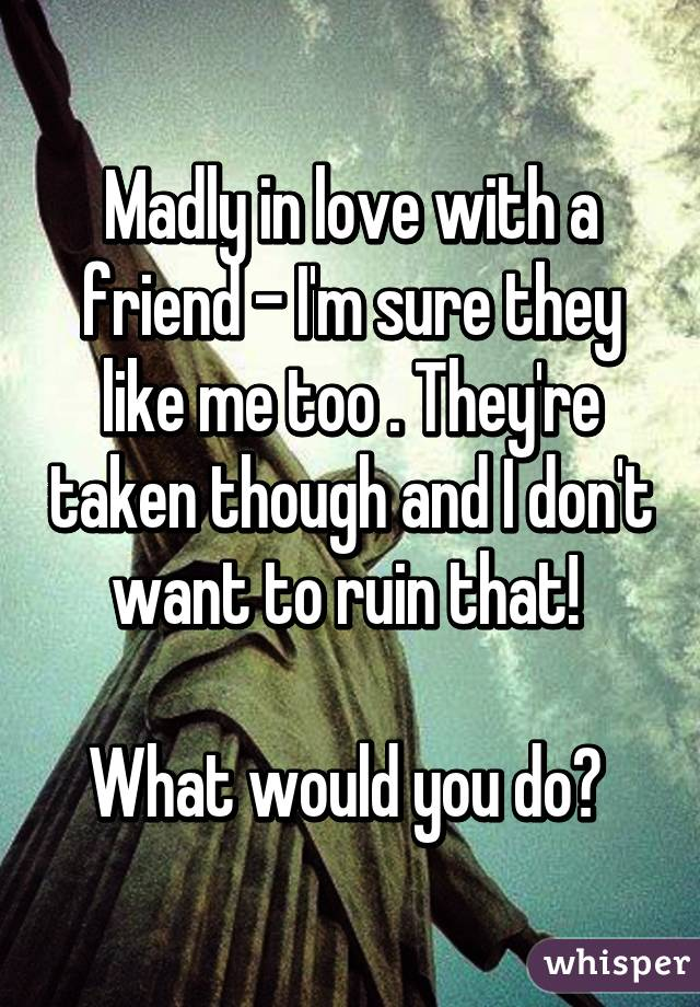 Madly in love with a friend - I'm sure they like me too . They're taken though and I don't want to ruin that!   What would you do?