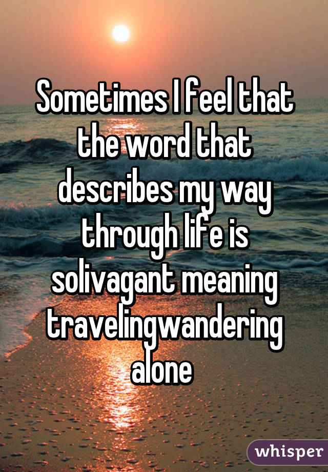 Sometimes I feel that the word that describes my way through life is solivagant meaning traveling\wandering alone
