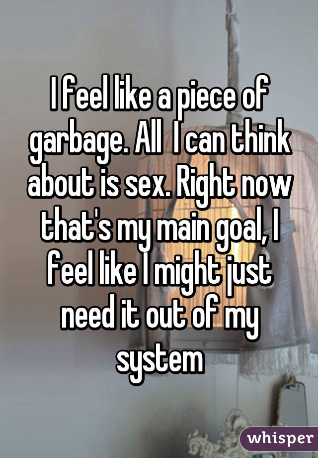 I feel like a piece of garbage. All  I can think about is sex. Right now that's my main goal, I feel like I might just need it out of my system