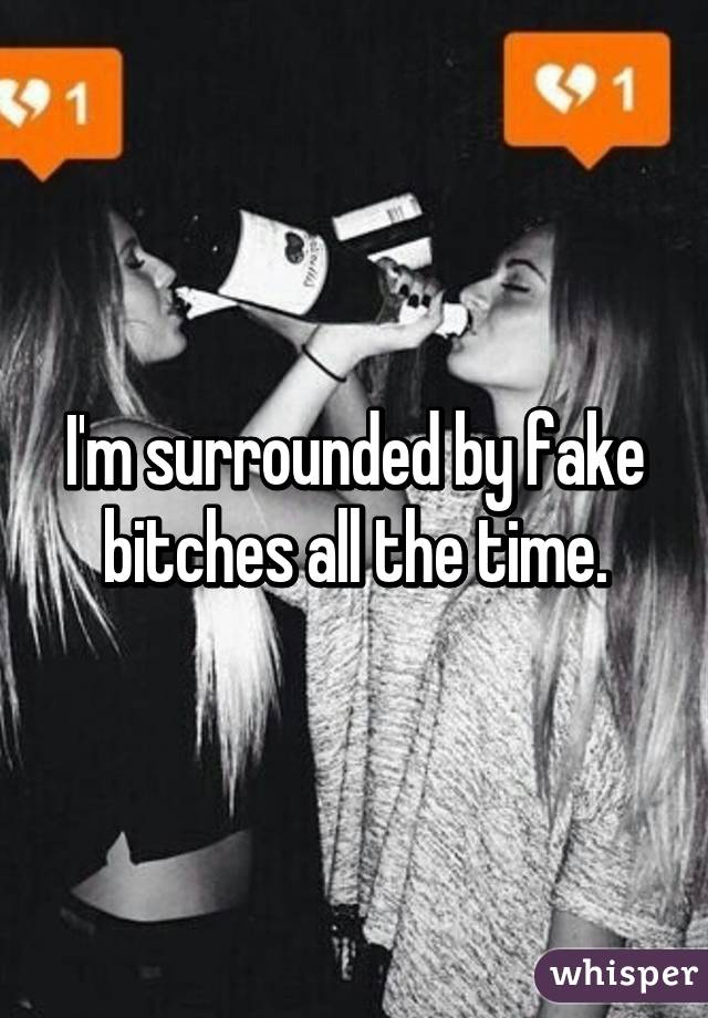 I'm surrounded by fake bitches all the time.