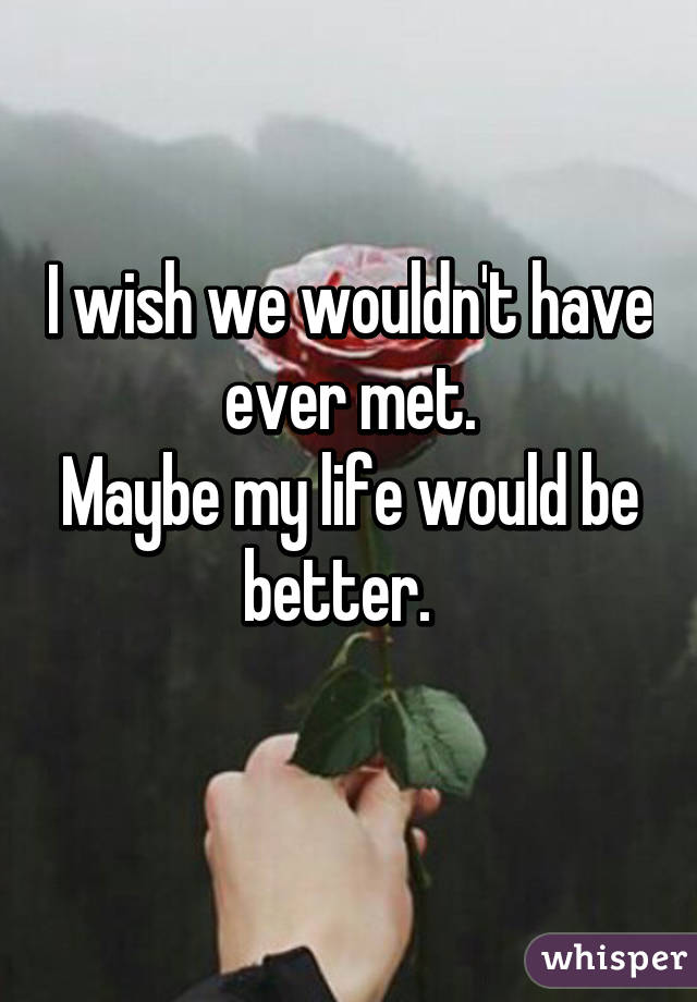 I wish we wouldn't have ever met. Maybe my life would be better.