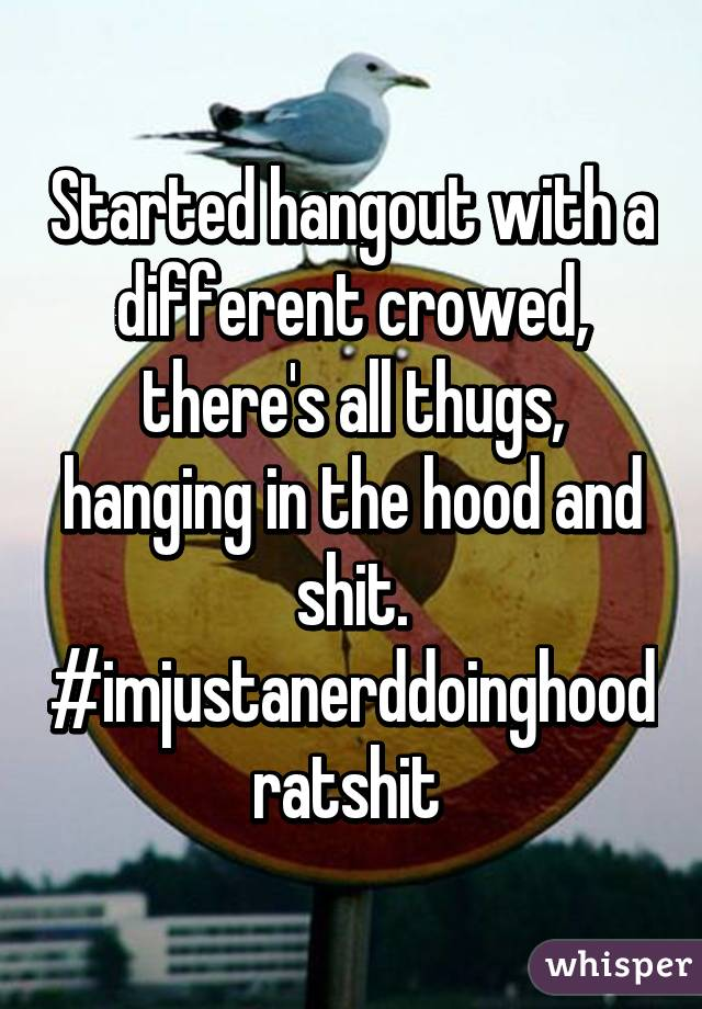 Started hangout with a different crowed, there's all thugs, hanging in the hood and shit. #imjustanerddoinghoodratshit