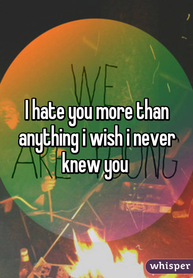 I hate you more than anything i wish i never knew you