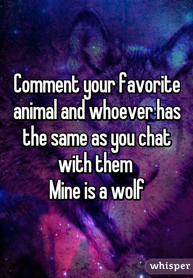 Comment your favorite animal and whoever has the same as you chat with them  Mine is a wolf