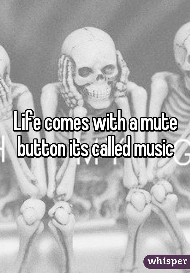 Life comes with a mute button its called music