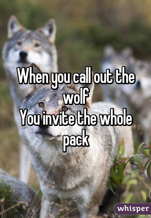 When you call out the wolf You invite the whole pack